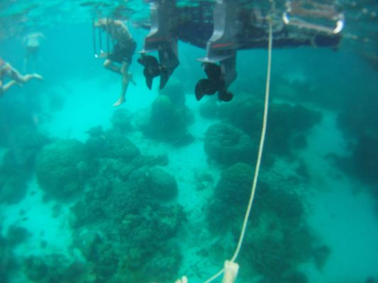 underwater during snorkeling in Angthong Marine National Park