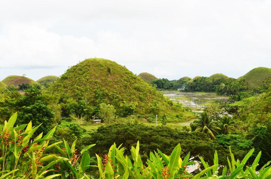 Sagbayan Peak Bohol