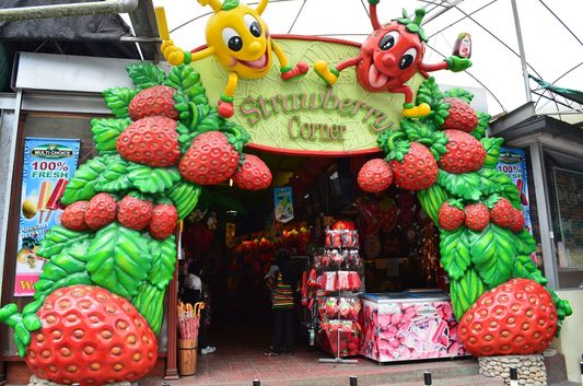 entrance to Multicrop centre in Cameron Highlands in Malaysia