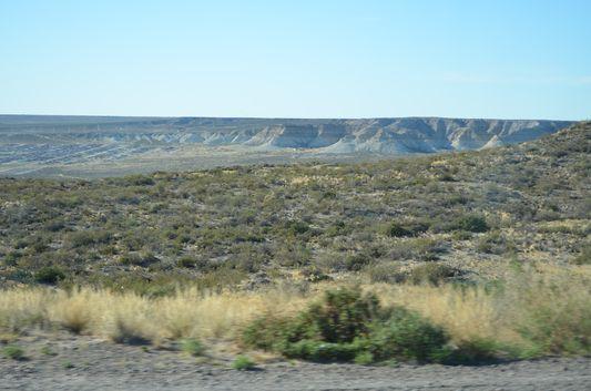Meseta - plateau around Puerto Madryn