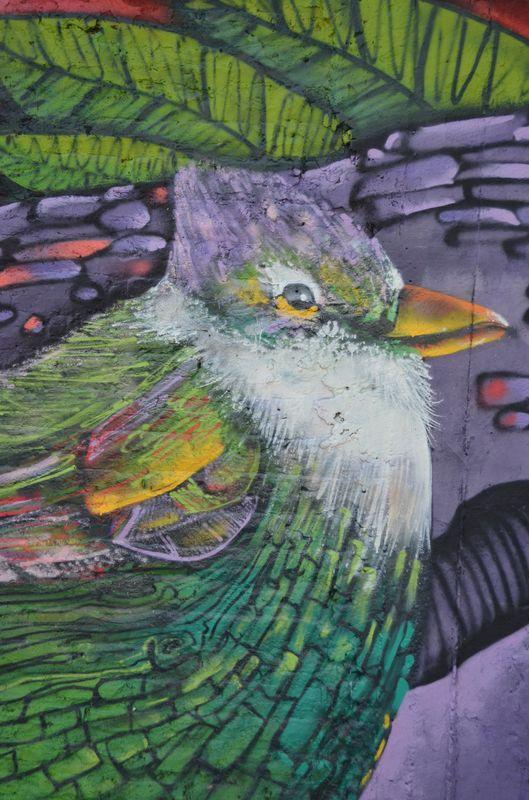 a bird graffiti in Bellavista barrio in Santiago