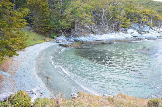 a greenish sand beach in Ensenada Bay in Tierra del Fuego