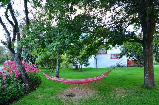 a hammock in Molino Viejo garden