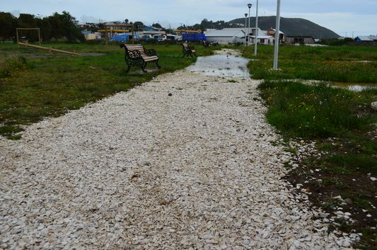 pathway with shells in Ancud