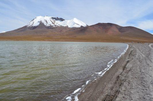 Chulluncani lagoon with borax around