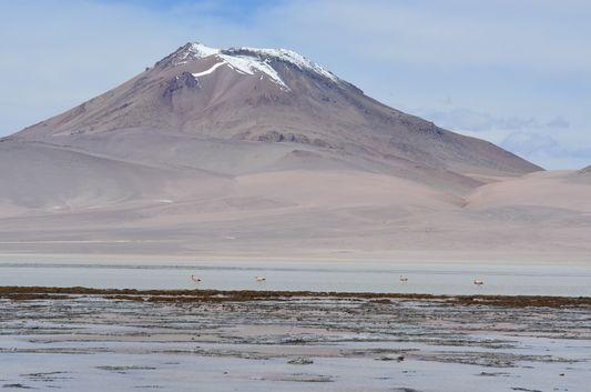 Kqara lagoon with flamingos