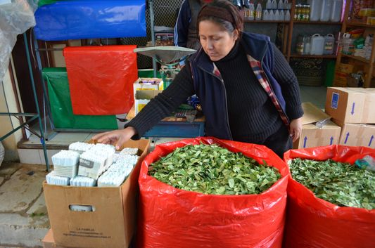 a Bolivian lady selling coca leaves in Tarabuco market