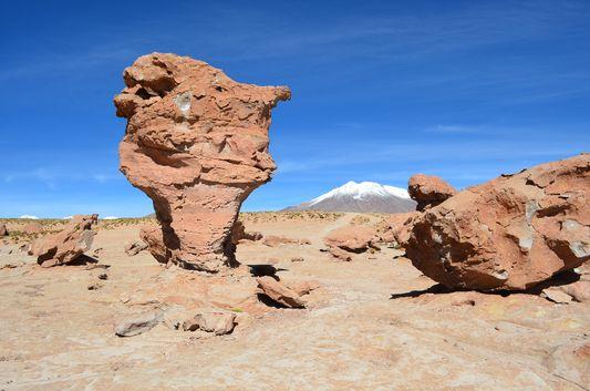 in Valle de Rocas my own Arbol de Piedra