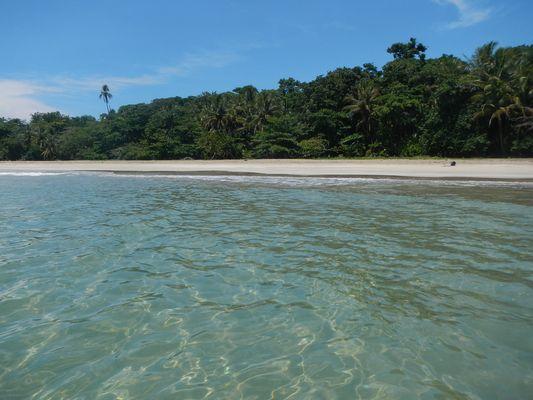 clear water at Manzanillo beach