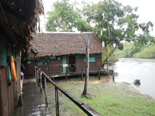 last look at our ecolodge