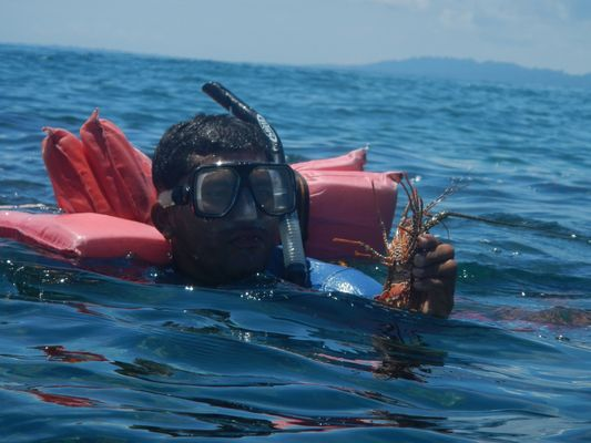 our guide found a lobster