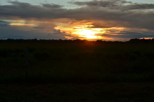 sunset in the pampas
