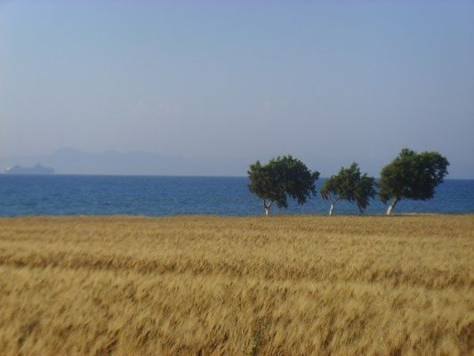 Greek Beach View