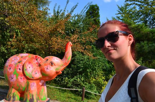 in the Budapest ZOO, yes with a colourful elephant