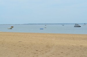 one of the beaches on Cape Cod