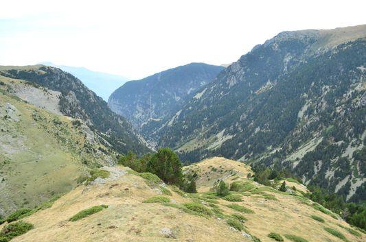 beautiful Pyrenees