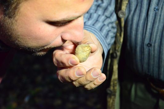 smelling a white truffle