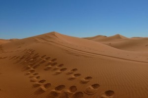 beautiful Sahara dunes