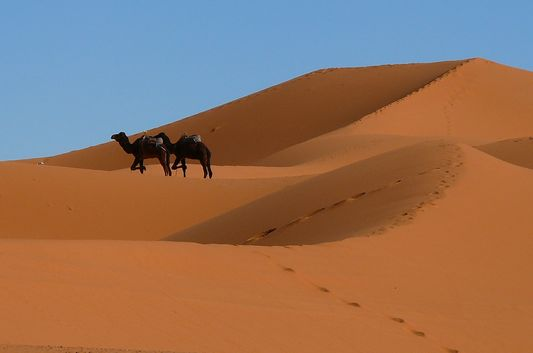 on the way through Sahara desert