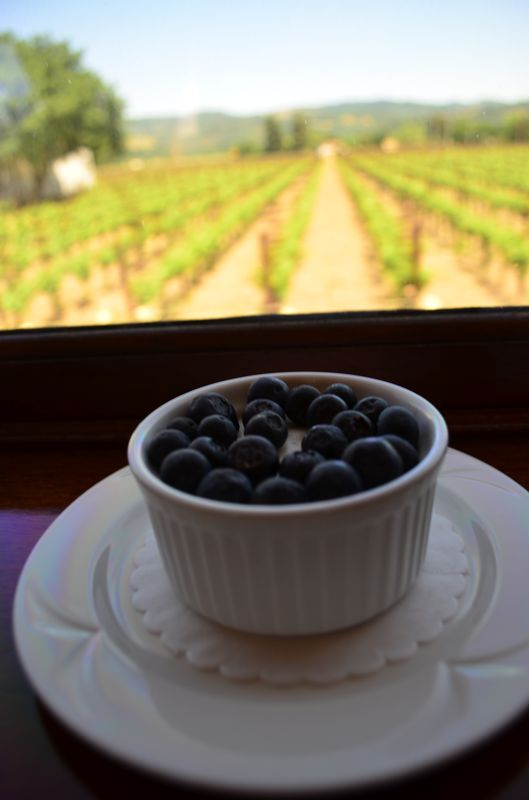 vegan coconut panna cotta with berries on Napa Valley Wine Train