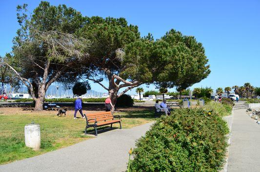 Gabrielson Memorial Park Sausalito