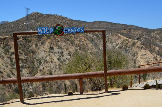 Wild Canyon zip line in Los Cabos