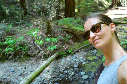 at the Redwood Creek in Muir Woods