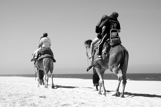 camel riding black and white to make it more dramatic