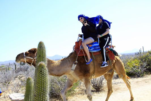 camel riding in Los Cabos
