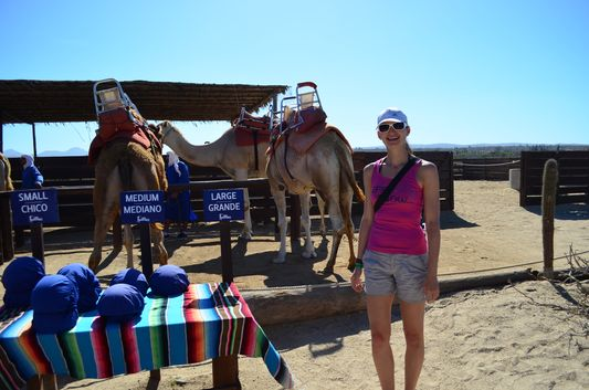 choosing the turban helmets for camel riding in Los Cabos