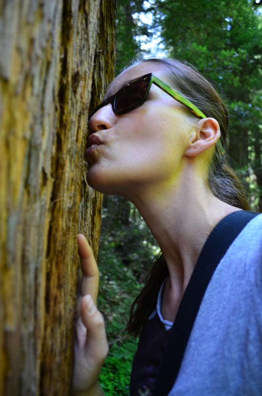 kissing a coastal redwood in Muir Woods