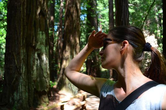 looking around the Cathedral Grove in Muir Woods
