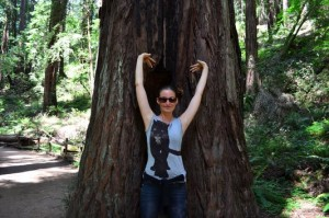 loving the tall redwoods in Muir Woods
