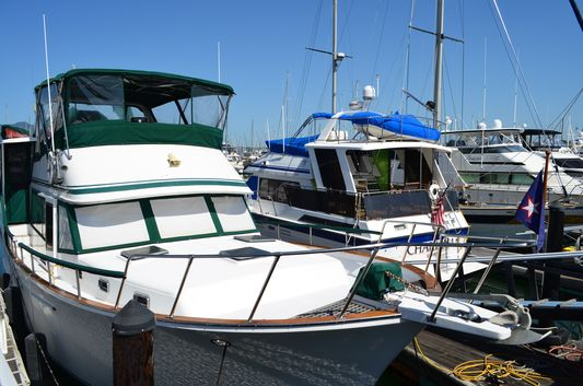 luxury yachts decked in Sausalito