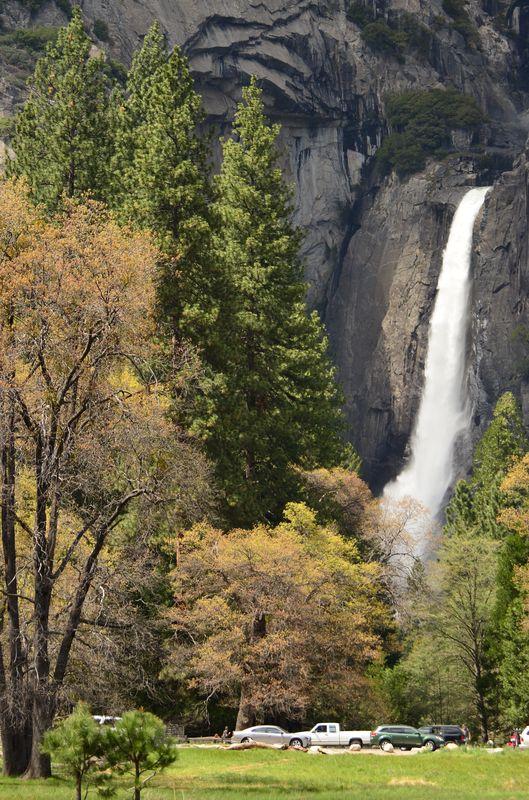 the Lower Yosemite Fall in Yosemite Valley