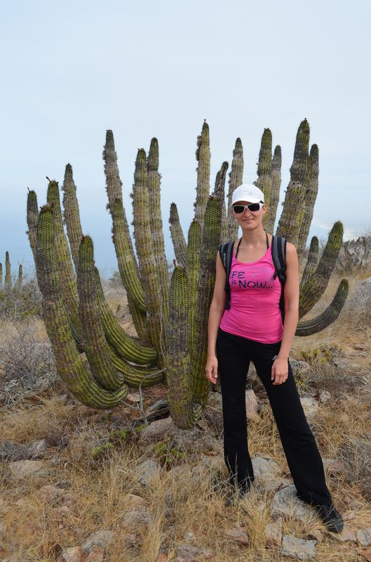 with one of many cacti