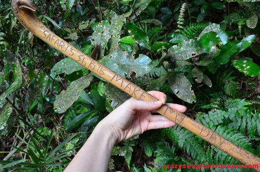 beautifully carved wooden walking stick