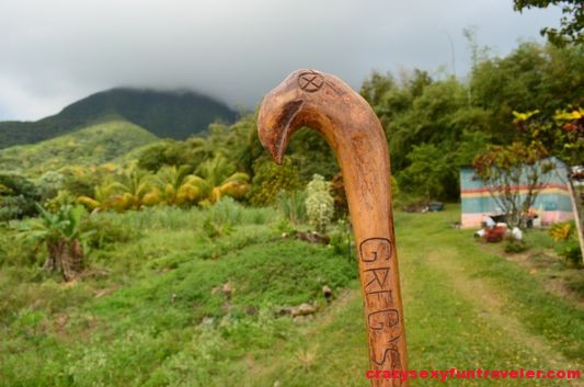 carved walking stick