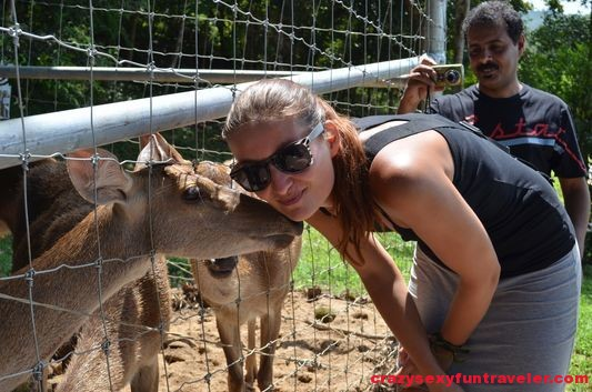 kissing with animals