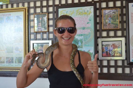 playing with a snake in Langkawi Malaysia