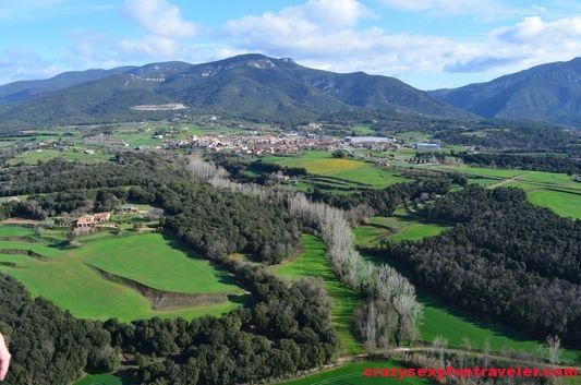 different trees in la Garrotxa