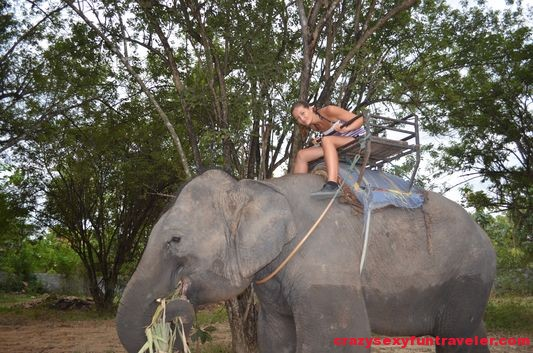 elephant ride Kanchanaburi