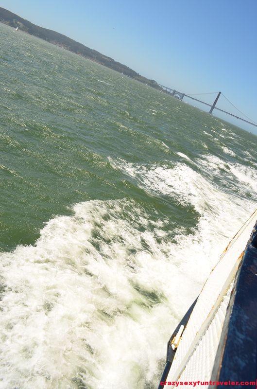 Bay Cruise Adventure