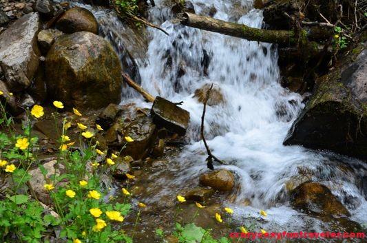 Jean-Larose waterfall (21)