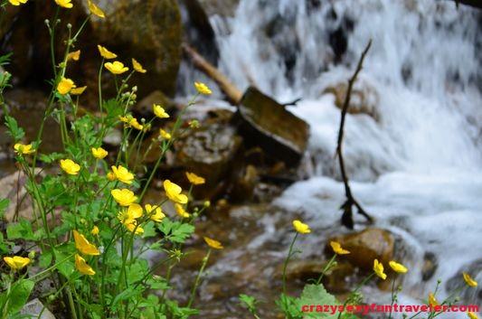 Jean-Larose waterfall (22)