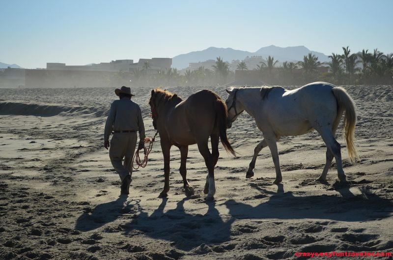 horse-back riding in Posada Real in San Jose del Cabo