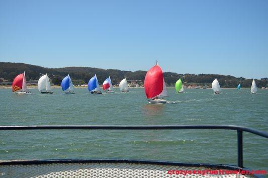 sailing in SF Bay