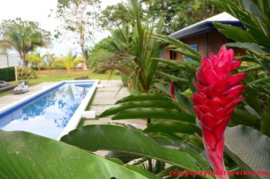 Blue Osa swimming pool