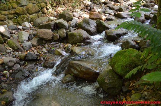 Canopy Adventure in El Valle de Anton (21)