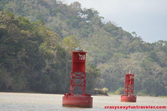 Chagres river Panama Canal Gatun lake (8)